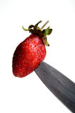 Strawberry over white background Stock Image