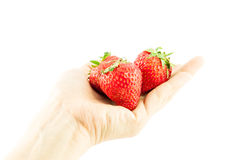 Strawberry on the palm Isolated on white background Stock Photography