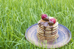 Strawberry pancakes for picnic on the grass horizontal Royalty Free Stock Photos