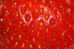 strawberry pattern background Stock Photography