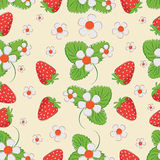 Strawberry pattern on a light background. Stock Photography