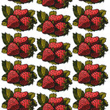 Strawberry pattern 7 Royalty Free Stock Photography