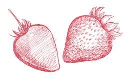 Strawberry pencil sketch Royalty Free Stock Photos