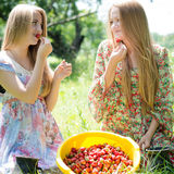 Strawberry pickers having fun Royalty Free Stock Images