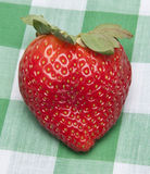 Strawberry Picnic Royalty Free Stock Images