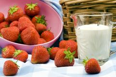 Strawberry Picnic Royalty Free Stock Photography