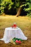 Strawberry picnic Stock Image