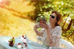 Strawberry picnic Stock Images