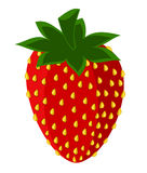 Strawberry picture Stock Images