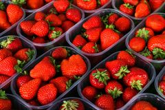 Strawberry in plastic containers stock image