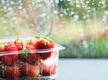 Strawberry in plastic package Stock Images