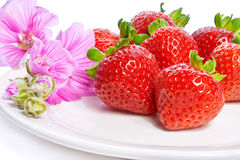 Strawberry on a plate decorated with malva flowers. Isolated on white Royalty Free Stock Photo