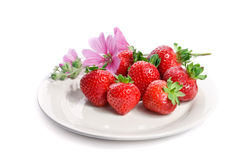 Strawberry on a plate, isolated on white. Strawberry on a plate decorated with malva flowers, isolated on white Royalty Free Stock Image