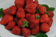 Strawberry plate Royalty Free Stock Images