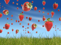 Strawberry Rain Royalty Free Stock Images