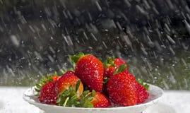 Strawberry in rain Stock Image