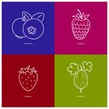 Strawberry,Raspberries,Blueberries,Gooseberry Stock Image