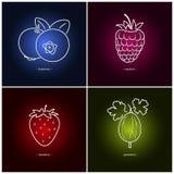 Strawberry,Raspberries,Blueberries,Gooseberry Stock Photos