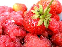 Strawberry a raspberry Royalty Free Stock Images