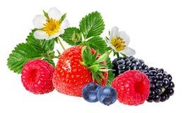 Strawberry,raspberry,blackberry  isolated on white. Background Stock Photo
