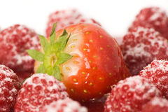 Strawberry and raspberry close up Stock Photography
