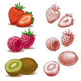 Strawberry, raspberry and kiwi Royalty Free Stock Photos