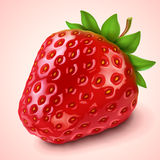 Strawberry. Realistic Strawberry icon-vector illustration stock illustration