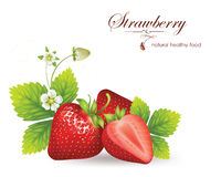 Strawberry. Realistic  illustration. Beautiful strawberry with leaves and flowers Stock Photos