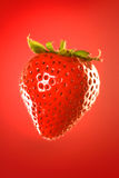 Strawberry on red. Fresh, ripe, juicy strawberry against red gradient background stock photography