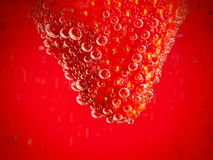Strawberry on red background with bubbles. stock photography