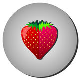 Strawberry. Red berries on the gray background. Vector illustration Royalty Free Stock Photography