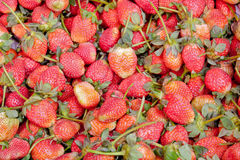 Strawberry red berry fruit are placed Royalty Free Stock Photo
