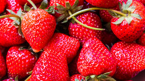 Strawberry. Red fresh from the garden Stock Image