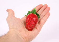 Strawberry Stock Photos