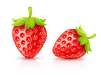 Strawberry red ripe fruits Stock Image