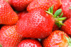 Strawberry. Red ripe juicy tasty strawberry Royalty Free Stock Photography