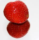 Strawberry reflected in mirror. A strawberry being reflected on a mirror with white background Royalty Free Stock Photos