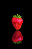 A strawberry with reflection on blac background Stock Images