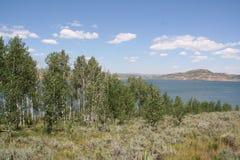 Strawberry Reservoir. Vegetation and mountain view at Strawberry Reservoir, Utah Stock Photo