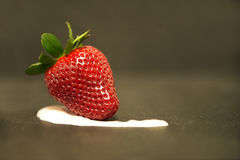 Strawberry. A strawberry resting on yogurt Royalty Free Stock Photography