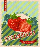 Strawberry retro poster Royalty Free Stock Images