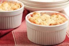 Strawberry Rhubarb Cobbler royalty free stock image