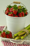 Strawberry and rhubarb. Strawberries in a white bucket and rhubarb tied with rope Royalty Free Stock Photography