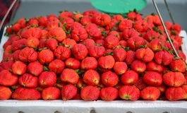 Strawberry at rural market royalty free stock photography