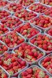 Strawberry& x27; s在市场上 免版税库存图片