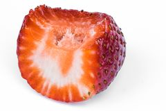 Strawberry& x27; s beettekens Stock Foto