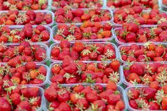 Strawberry& x27; s bij een markt Stock Fotografie