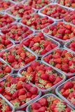 Strawberry& x27; s en un mercado imagen de archivo libre de regalías