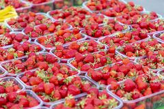 Strawberry& x27; s en un mercado imagen de archivo