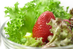 Strawberry in Salad Royalty Free Stock Photo